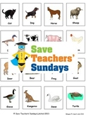 Animals and their babies / offspring lesson plan and cards