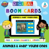 Animals and their young ones | Baby Animals |Pre-k Kinderg