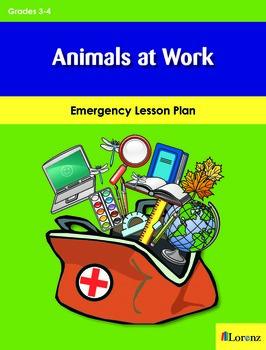 Animals at Work