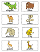 Zoo Bingo Game - Zoo Themed Activity