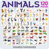 Animals flashcards