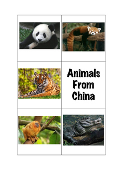 Animals from China Tally