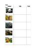 Animals from China Tally