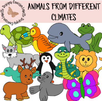 Animals from Different Climates