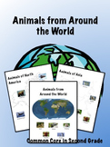 Animals from Different Continents Information Packet