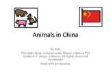 Animals in China: A book for learners with special needs