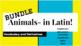 LATIN: Animals -- BUNDLE!