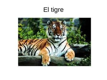 Animals in Spanish PowerPoint Flashcards