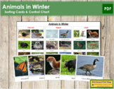Animals in Winter: Migrate, Hibernate or Adapt?  (Animal Behavior)