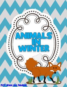 Animals in Winter--A Mini Unit
