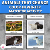 Animals in Winter Animals that Change Color in Winter Activity
