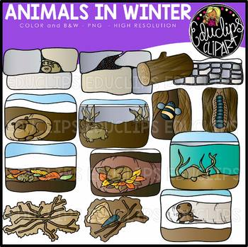 Animals in Winter Clip Art Set {Educlips Clipart}