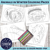 Animals in Winter Coloring Pages