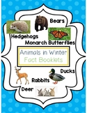 Animals in Winter Fact Booklets
