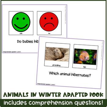 Animals in Winter / Hibernation Interactive Book