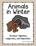 Animals in Winter - Migration, Adaptation, and Hibernation