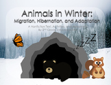Animals in Winter: Migration, Hibernation, and Adaptation