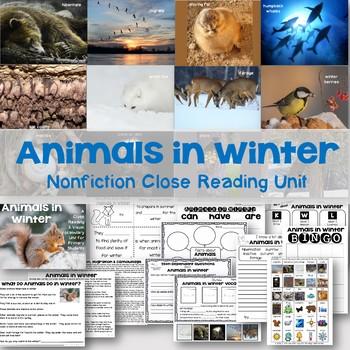 Animals in Winter Nonfiction Close Reading & Visual Vocabulary Unit