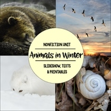 Animals in Winter Nonfiction Close Reading & Visual Vocabu