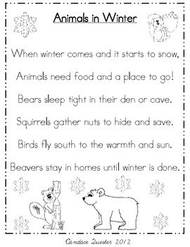 animals in winter poem pack mini unit by candace quester tpt. Black Bedroom Furniture Sets. Home Design Ideas
