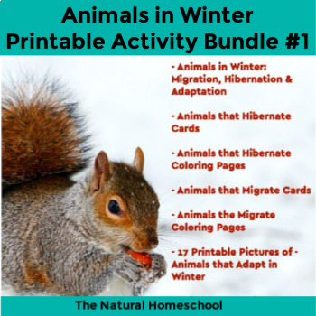 Animals in Winter Printables Bundle #1