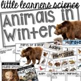Animals in Winter -  - Science for Little Learners (presch