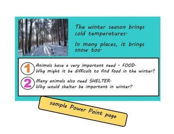 Animals in Winter Unit (hibernation, migration, adaptation)