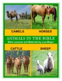 Animals in the Bible Worksheet - Some animals in the Bible