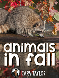 Animals in the Fall~ Hibernating, Migrating, and Adapting