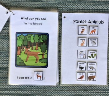 Animals in the Forest! Interactive Mini-Book
