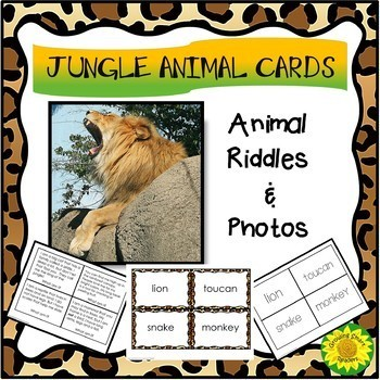 Animals in the Jungle Bundle