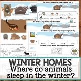 Winter Homes: Where do animals sleep in the winter?