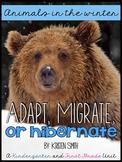 Animals in the winter- hibernation, migration, adaptation