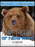 Animals in the winter- hibernation, migration, adaptation