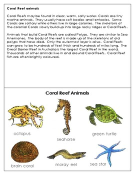 Animals in their Habitat: Coral Reef Animals