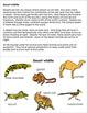 Animals in their Habitat: Desert wildlife