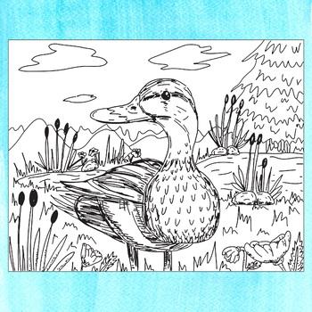 Animal Coloring Pages, Zen Doodles