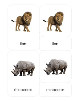 Animals of Africa 3-Part Montessori-Inspired Card Set