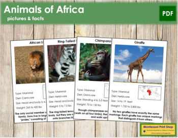 Animals of Africa (Red)