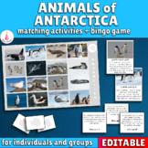 Antarctic Animals Bingo Game and Matching Activities