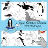 Animals of Antarctica Bundle Clip Art
