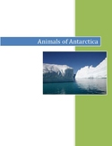 Animals of Antarctica  (Montessori) 3-Part Cards