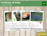 Animals of Asia (Red)