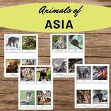 Animals of Asia Three Part Cards Montessori Preschool Home school Waldorf