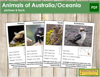 Animals of Australia/Oceania