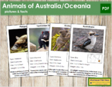 Animals of Australia/Oceania (color-coded) - Pictures & Facts