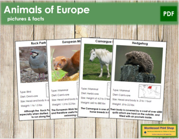 Animals of Europe (Red)