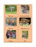 Animals of North American Tracks Matching Cards