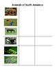 Animals of South America