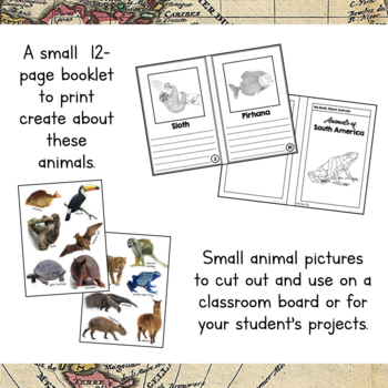 South America Unit Study: Animals of South America Information Cards